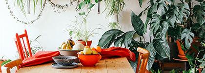 гостуване на приятели, домашно гостуване, идеи за гости, спестяване, бюджет